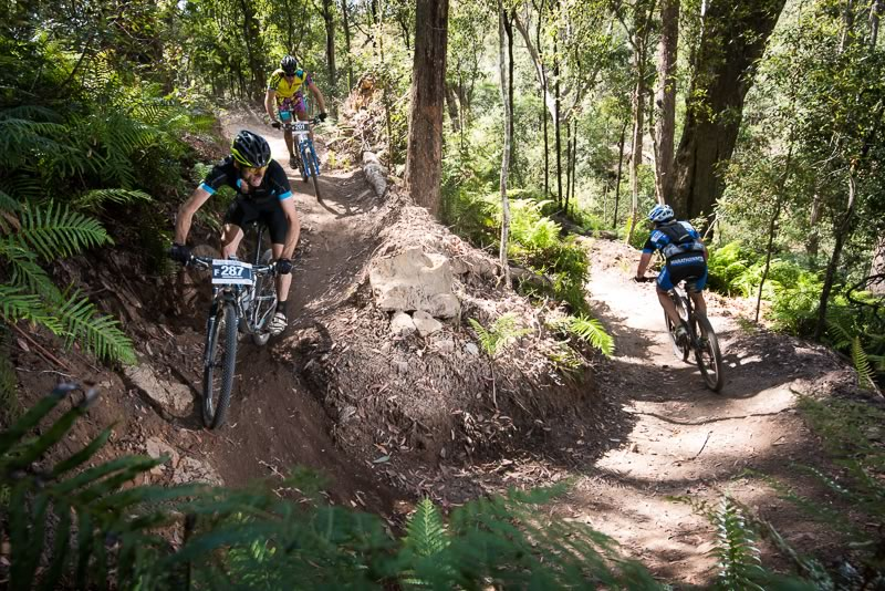 Stunning singletrack through Wingello State Forest