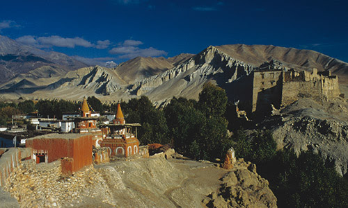 Discover the Kingdom of Mustang
